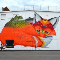 Ballstad fox 2018